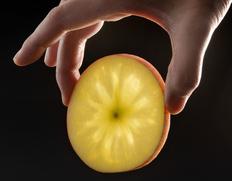 1/20〜2/1出荷◇ 究極の蜜入りリンゴ「こみつ」 青森県産 約2kg(6〜12玉)