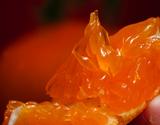JAからつ『津之輝(つのかがやき)』佐賀県産柑橘 2S〜2Lサイズ 風袋込約2.5kg(11〜30玉) 簡易包装 ※常温の商品画像
