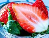 『いちごさん』佐賀県産イチゴ 大粒5Lサイズ 約240g(4〜7粒)×2パック ※冷蔵【★】#元気いただきますプロジェクトの商品画像