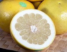 4/13〜18出荷 園地指定の完熟品『ゴールデンオロブロンコ』カリフォルニア産柑橘 約3kg(7〜11玉)