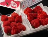 『あまおう』福岡県産いちご G(グランデ)2箱(約270g×4P)※冷蔵【豊洲市場直送】の商品画像