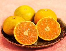 糖度12度以上『南国の陽蜜 プレミアム( 陽宝)』宮崎県産みかん 小玉サイズのお取り寄せ通販