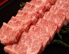 30日熟成 山勇畜産・【焼き肉用】飛騨牛5等級 極上カルビ肉 約500g ※冷凍
