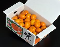 1/27〜2/1出荷 『味ロマン』長崎県産みかん 2S〜Mサイズ 約2.5kg