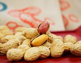 新品種「Qなっつ(キューナッツ)」 千葉県八街産 焙煎 100g×2袋 落花生 ピーナッツ【令和元年 新豆】 ※メール便の商品画像