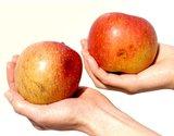 台風キズ『訳ありサンふじ』長野県上田産りんご 約4.5kg(14〜20玉)の商品画像