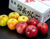 留目秀樹さんの林檎「葉とらずフジ&ぐんま名月詰め合わせ」超特選品 約3kg(計8玉)青森県 留長果樹園の商品画像