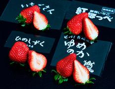 3月下旬〜4月下旬出荷 【第二弾】「ブランドいちご4品種食べ比べ」 約1kg(いちごさん、ゆめのか、ひのしずく、紅ほっぺ) ※冷蔵