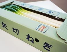 2/3〜8出荷 『矢切ねぎ』千葉県松戸産 L〜2L 約2.5kg(9〜14本入)