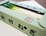 『矢切ねぎ』千葉県松戸産 L〜2L 約2.5kg(9〜14本入)の商品画像