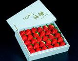 『いちごさん』佐賀県産イチゴ 約800g 4L 30粒 木箱入り ※冷蔵【★】#元気いただきますプロジェクトの商品画像