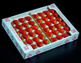 『ミガキイチゴ』宮城県産 プロ 約300g(20〜24粒)×2 約600g  ※冷蔵の商品画像