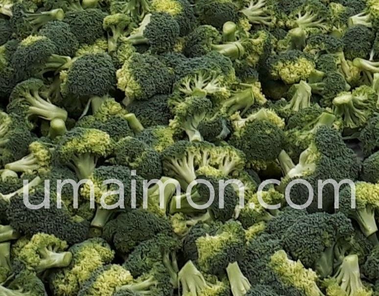 ブロッコリー 冷凍 食品