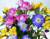 葛西市場よりお届け『季節のお花 色はおまかせセット』生花 3〜5品種 30本以上 ※常温の商品画像