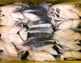 【給食応援】「銀ダラ切身」アラスカ産 約50g×120枚入り ※冷凍の商品画像