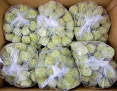 3/25以降順次出荷 【給食応援】「枝豆たっぷりボール」300個(1枚約18g×50個×6P)※冷凍