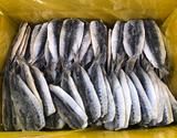 【給食応援】国産イワシ開き 6kg(30g×200切入) ※冷凍の商品画像