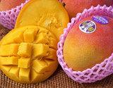 『超大玉アップルマンゴー(ヘーデン種)』メキシコ産 9玉 計5kg以上(1玉500gUP)産地箱の商品画像