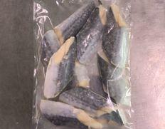 【給食応援】 国産サワラ切身 1.2kg (40g×10枚×3袋)※冷凍