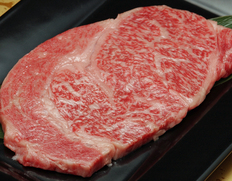 送料無料 30日熟成 飛騨牛『飛び牛 リブロースステーキ 約500g』 【ウエットエイジング】※冷蔵【フードロス削減】
