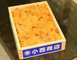 【お値打ち】『キタムラサキウニ』弁当箱(バラ・B品)約250g 北海道・青森産 ※冷蔵【豊洲市場直送】の商品画像