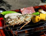 Snow Peak BBQ Aセット+『全4回分の食材(ハンバーガー・ソーセージ・海鮮・エゾシカ)』(約2人前)の商品画像