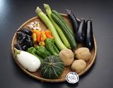 静岡県丹那より直送!「季節の函南めぐり野菜」 目安として5〜8品目【◆】※冷蔵の商品画像