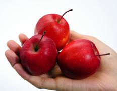 11/30〜12/5出荷 青森県産 『手に収まってしまう小さなりんご 水野さんのミニふじ』 約2kg(30玉前後) ※常温