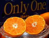 JAからつ 『Only One』佐賀県産みかん 特秀品 約5kg M〜Lサイズ ※常温の商品画像