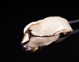兵庫県室津産『活き剥き牡蠣(パック詰め・生食用)』500g(30〜35粒入)※冷蔵の商品画像