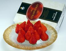 旬果旬菜 フルーツのお取り寄せ通販