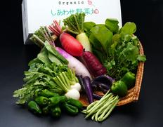 【定期購入】『オーガニック・しあわせ野菜うまいもんセット』静岡県掛川市産 季節の有機野菜8〜10袋 ※冷蔵