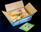 『白子たけのこ』京都山城産 バラ詰め 約2kg +木の芽・糠付き ※冷蔵の商品画像