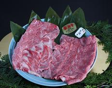 30日熟成 飛騨牛 すき焼き肉(5等級サーロインスライス肉)約500g ※冷蔵