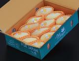 『ナムドクマイ マンゴー』 タイ産 産地箱 約4kg(風袋込み) 12玉入り 空輸 ※常温の商品画像