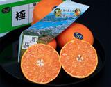『せとか 極』愛媛県中島産 露地栽培  約3kg 2〜3Lサイズ (10〜12玉) 化粧箱 ※常温の商品画像