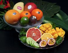 5/3〜8出荷◇ 「異国の香りフルーツセット」 全6種 約1kg  ※常温