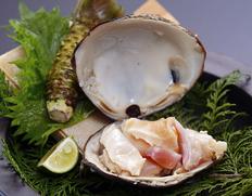 『特大 天然活ホッキ貝』北海道厚岸産 1kg(3〜4個) ※冷蔵