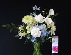 『白いカーネーション入り お供えの花束』カーネーション他 お線香付き ※常温