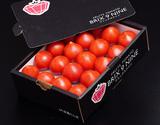 『ブリックスナイン』群馬県産 フルーツトマト 小玉2S〜2Lサイズ 風袋込約1.0kg ※冷蔵 JA全農ぐんまの商品画像