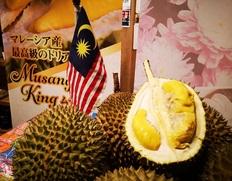 7/12収穫予定 『完熟収穫の猫山王』 マレーシア産 生ドリアン 約2.0kg 簡易包装 ※冷蔵
