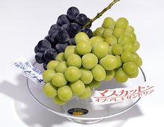 晴れの国 おかやま の3種のブドウ食べ比べセットをお届けします!のお取り寄せ