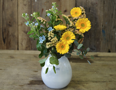 毎月葛西市場よりお届け『季節のお花 色はおまかせセット』生花 3品種前後 20本以上 ※冷蔵