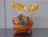 『西村早生柿』 福岡県産 5玉入り ※常温 【大田夜市】の商品画像