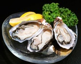 『殻付き牡蠣』兵庫県赤穂産 10個(50〜100g/個) ※冷蔵 sの商品画像