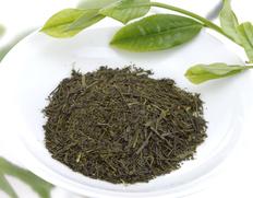 【2021年 初摘み新茶】牧之原台地 浅蒸し 100g