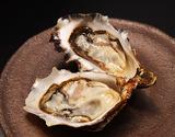北海道厚岸産 生食用牡蠣 カキえもん Lサイズ12個(殻付き) ※冷蔵の商品画像